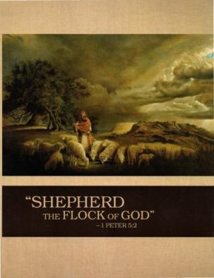 shepherd-flock-cover-ks10
